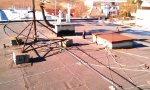 Rekonštrukcia plochej strechy Chtelnica 3